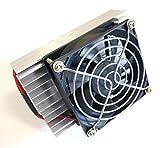 DC 12V ペルチェ ポータブル クーラー 冷却 ファン 保温 冷温 庫 ユニット 完成品 (1個)