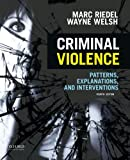 img - for Criminal Violence: Patterns, Explanations, and Interventions book / textbook / text book
