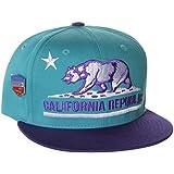 California Republic Flat Bill Vintage Style Snapback Hat Cap