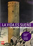 Image of La vida es sueno/ Life is dream (Spanish Edition)
