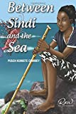 Between Sindi and the sea: Challenging horizons (Real African Writers (RAW))