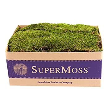 Super Moss (21508) Preserved Sheet Moss, Fresh Green 20-24 sq feet Appx 3.5lb