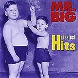 """Greatest Hitsvon """"Mr. Big"""""""