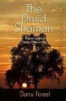 The Druid Shaman: Exploring the Celtic Otherworld