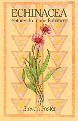 Echinacea: Nature's Immune Enhancer