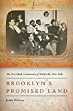 img - for Brooklyn's Promised Land: The Free Black Community of Weeksville, New York book / textbook / text book