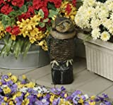 Easy Gardener 8021 Garden Defense Electronic Sensor Owl