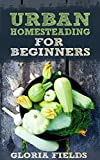 Urban Homesteading: A Basic Guide On How To Live A Simpler And More Ecological Lifestyle.