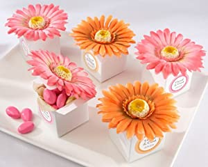Set of 24 Hot Pink Daisy Delight Gerbera Favor Box