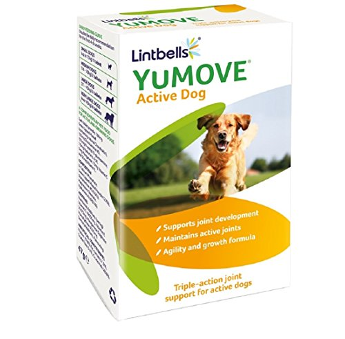 Yumove-Young-and-Active-Dog-Joint-Supplement