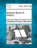img - for Anthony Burns A History book / textbook / text book