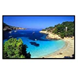 Outdoor Portable Movie Screen 120Inch 16:9 Home Cinema Projector Screen, PVC Fabric, Matte White