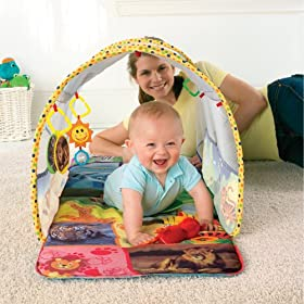 Baby Einstein Animal Exploration Tunnel