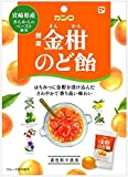 カンロ 健康金柑のど飴(個包装タイプ) 80g×6袋