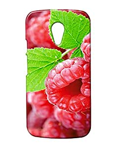 Pickpattern Back Cover for Motorola Moto G 2nd Gen
