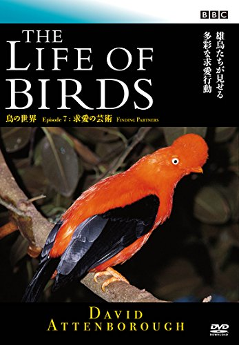 BBC 鳥の世界7 求愛の芸術 [DVD]