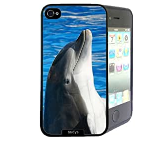 Shawnex Shawnex Dolphin Face Pool Dolphins ThinShell Case Protective iPhone 4 Case iPhone 4S Case
