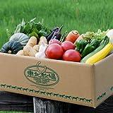 東北牧場 有機野菜10種 Sサイズセット