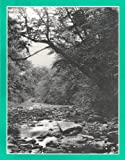 The Last Forest: Tales of the Allegheny Woods