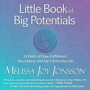 Little Book of Big Potentials Audiobook