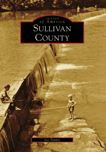 Sullivan County (Images of America: Tennessee)