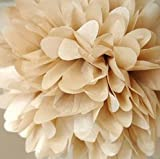 NO1 10 Pack Tissue Paper Flower Ball Pom poms For Party Wedding Home Decoration Gold
