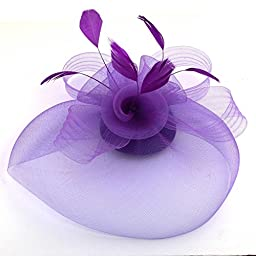 Vlovelife Elegant Feather Net and Veil Fascinator Hair Clip Hat Fascinator Veil Topper Cones for Fashion Woman Girl Lady Wedding Races (purple)