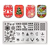 Summer Fruit Nail Art Stamping Template Tropical Punch Pattern Rectangle Image Plate Stamping Polish Needed BP-L032 (Color: BP-L032)