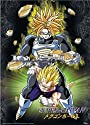 Dragonball Z Cloth Wall Scroll Poster