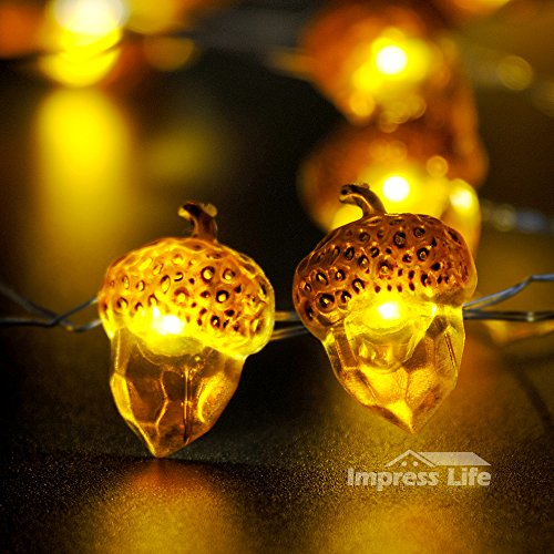 IMPRESS LIFE Acorn Rope Lights String on Copper Wire 10 ft 40 LEDs with Remote for Outdoor, indoor, Wedding, Spring, Summer, Fall, Baby Shower, Ice Age, Birthday Parties & DIY Home (Couples To Be For Halloween)