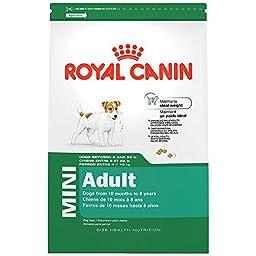 ROYAL CANIN SIZE HEALTH NUTRITION MINI Adult dry dog food, 2.5-Pound