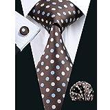 Hi-Tie ブラウン ネクタイセット ファッション ドット 結婚式