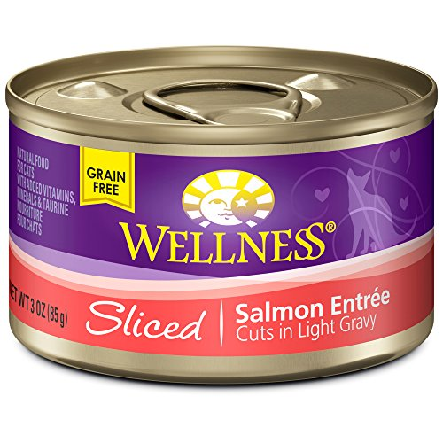 Wellness Natural Canned Grain Free Wet Cat Food, Sliced Salmon, 3-Ounce Can (Pack of 24) (Wellness Canned Cat Food Salmon compare prices)