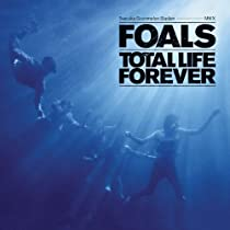 Foals photos
