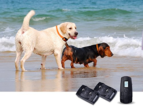 Taotronics Tt-Pt12 Waterproof Remote Dog Collar Include 10 Levles Beep,10 Level Vibration And 10 Level Of Progressive Shock