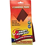 Paint Perfect Assorted Sanding Pads Pack of 6