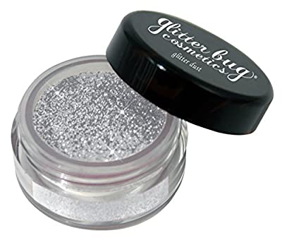 Cosmetic Glitter Dust Metallic Silver