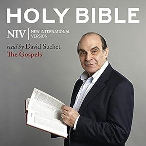 The NIV Audio Bible, the Gospels Audiobook