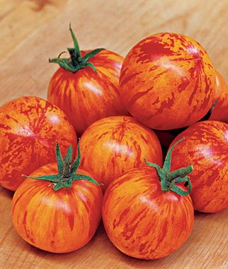 Red Lightning Hybrid Tomato 200 Seeds By Jays Seeds (Hybrid Tomato Plants compare prices)
