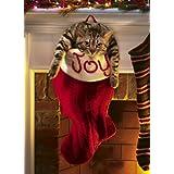 Avanti Christmas Cards, Overstuffed Stocking, 10-Count ~ Avanti Press