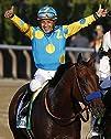 American Pharaoh 2015 Belmont Stakes…