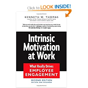 Intrinsic Motivation at Work: Building Energy and Commitment