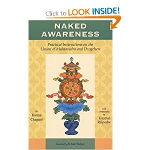 Naked Awareness: Practical Instructions On The Union Of Mahamudra And Dzogchen Karma Chagme and B. Alan Wallace