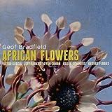 Lubumbashi - Geof Bradfield