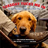 img - for Tuesday Tucks Me In: The Loyal Bond Between a Soldier and His Service Dog book / textbook / text book