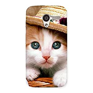 Ajay Enterprises Elite Cuty Premium Cute Hats Cat Multicolor Back Case Cover for Moto X