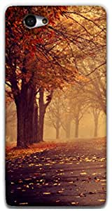 The Racoon Lean autumn path hard plastic printed back case / cover for Sony Xperia M2