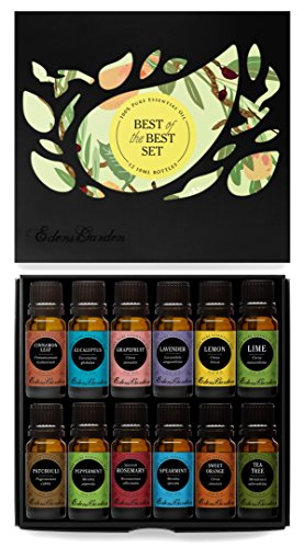 Essential Oil- Beginners Best of the Best Aromatherapy Gift Set-  12/