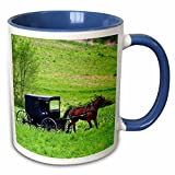 Danita Delimont - Farms - Amish farm with horse buggy near Berlin, Ohio - US36 DFR0018 - David R. Frazier - 11oz Two-Tone Blue Mug (mug_93371_6)