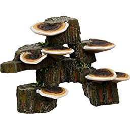 Pen-Plax RR1006 Mushrooms on Rock Aquarium Ornament, Small/6'' x 3'' x 4.25''